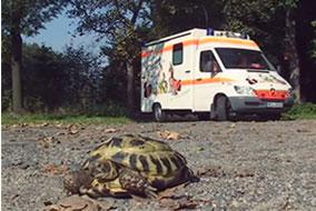 Notfall-Krankenwagen der Tierarztpraxis Naumann
