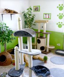 Tierpension Tierarztpraxis Naumann